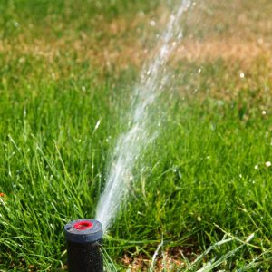 Truth Only May Get You To Alter Your Yard Sprinkler Systems Technique